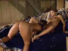 Beautiful Girls Licking Pussies And Sucking Firm Boobs